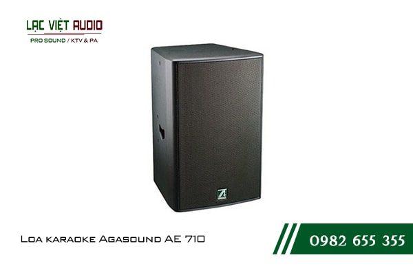 Giới thiệu về sản phẩm Loa karaoke Agasound AE 710