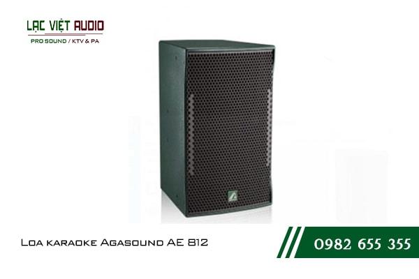 Giới thiệu về sản phẩm Loa karaoke Agasound AE 812