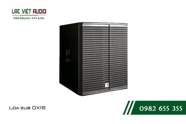 Giới thiệu về sản phẩm Loa sub DX18