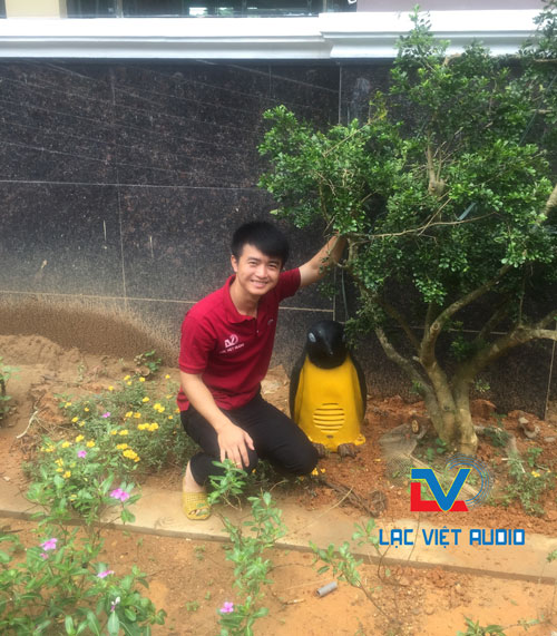 Loa sân vườn hình thú chim cánh cụt được lắp đặt tại bệnh viện Hùng Vương