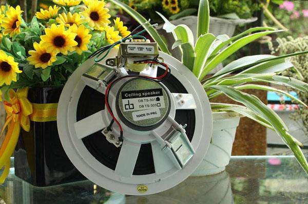 Loa âm trần DB TS-301 thiết kế đơn giản