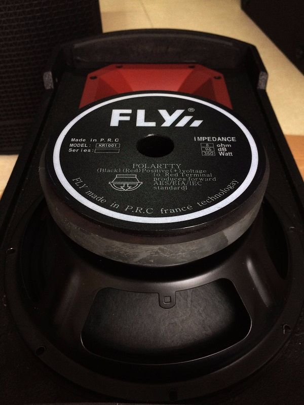 Nội thất bên trong loa FLY KR1201