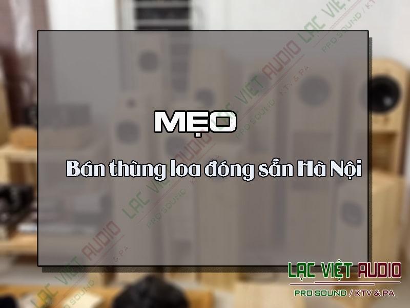 Bán thùng loa đóng sẵn Hà Nội- Lạc Việt Audio địa chỉ uy tín